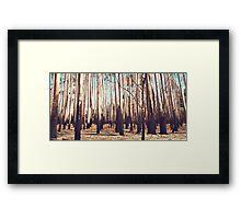Yarloop Fires  Framed Print