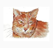 Ginger Tabby One Piece - Short Sleeve