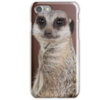 meerkats look at me iPhone Case/Skin