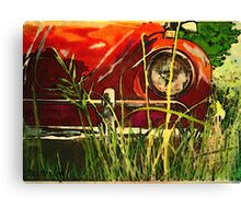 Poppies Field Canvas Print