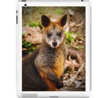 red wallaby iPad Case/Skin