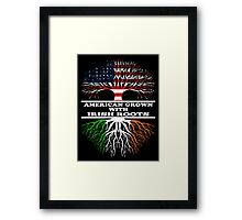 American Irish Framed Print