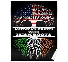 American Irish Poster