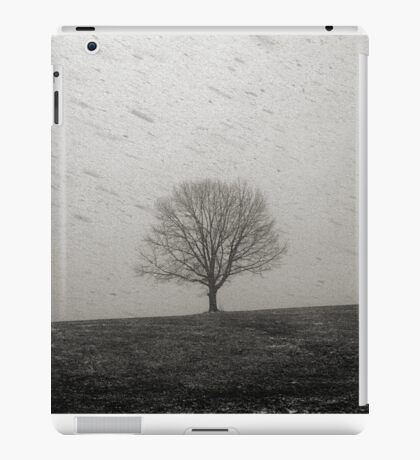 Lone Tree and Snowstorm iPad Case/Skin