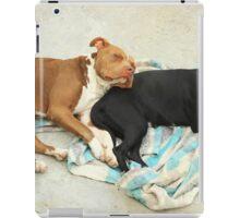 Dogs Sleeping iPad Case/Skin