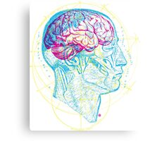 Head and Brain Canvas Print