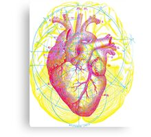 Heart and Brain Canvas Print