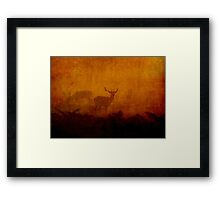 Shadow Deer Framed Print