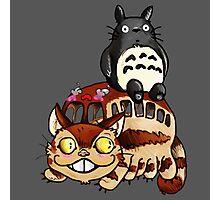 Catbus and Totoro - A Fun Ride Photographic Print