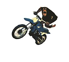 Monkey on a Dirt Bike Photographic Print