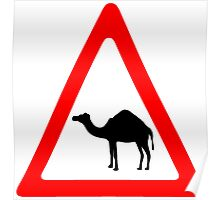 Caution Camel Traffic Sign Poster