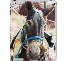 Donkey, Santorini iPad Case/Skin