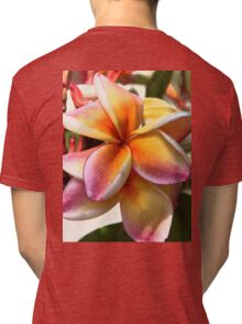 Bright pinks and golds Tri-blend T-Shirt