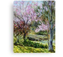 Plum Blossoms Japanese Garden  Canvas Print