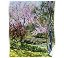 Plum Blossoms Japanese Garden  Poster