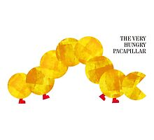 The Very Hungry Pacapillar by byway