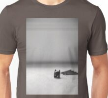 The Cowl And Cape Unisex T-Shirt
