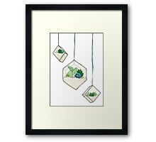 Hanging Succulents One Framed Print