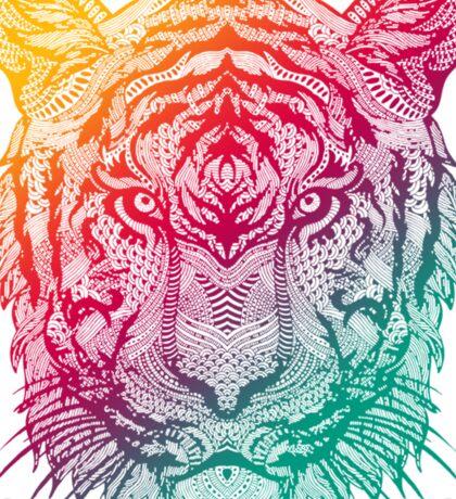 Warm Tiger Sticker