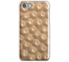 Stony Coral iPhone Case/Skin