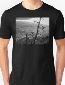 Stark Tree T-Shirt