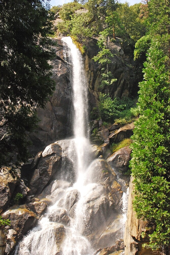 Grizzly Falls by Mary Carol Story