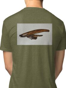 Eye of Humpback Tri-blend T-Shirt