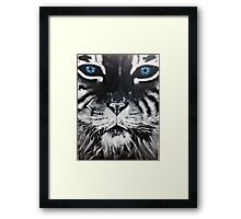 Black and White Tiger Blue Eyes Framed Print