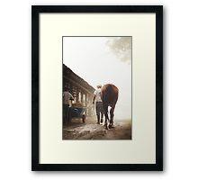 Foggy Walk Framed Print