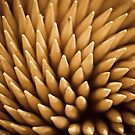 Toothpicks by Randy Turnbow