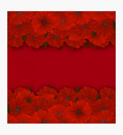 Flower frame. Floral border. Bouquet of red poppy on red background Photographic Print