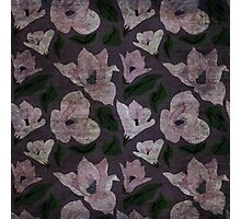 Vintage grunge floral pattern old retro print textile fabric background Photographic Print