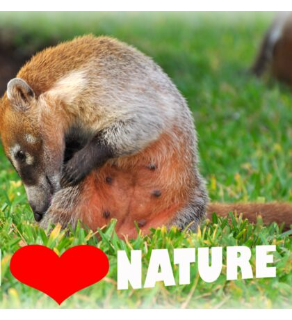 Badger - I love nature (heart) Sticker
