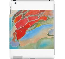the landscape iPad Case/Skin