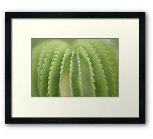 Green Anatomy Framed Print