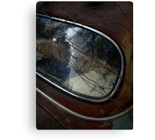 Rear Vision Canvas Print