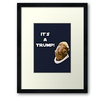 It's a Trump! Framed Print