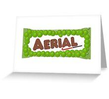 Aerial! Greeting Card