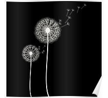 dandelion on black background Poster