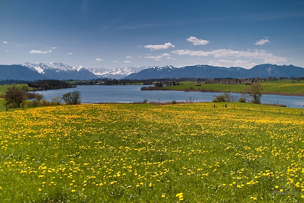 Lake Rieg in Spring by Kasia-D