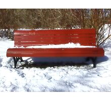 Banc d'hiver Photographic Print