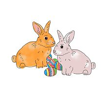 Easter bunnies, bunny Photographic Print