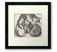 cats /rose and gold Framed Print