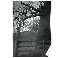 Truncated ~ Gothic Black & White Tree Image, Tremeirchion, North Wales UK Poster