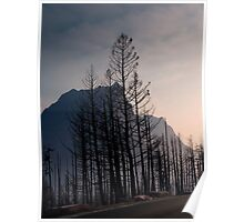 Glacier National Park after 2015 Wildfire .2 Poster
