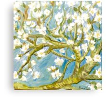 Almond in Bloom: in Quest of all things Vincent Canvas Print