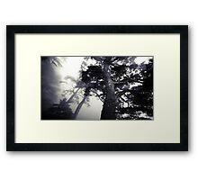 The Dark Forest 5 Framed Print