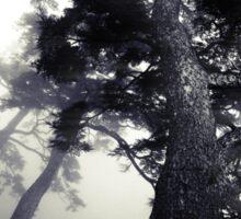 The Dark Forest 5 Sticker