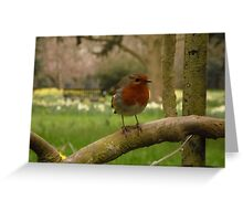 Not just for Christmas cards Greeting Card