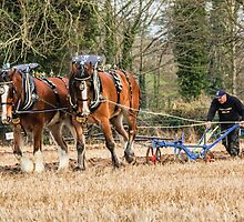 The Ploughman by peaky40